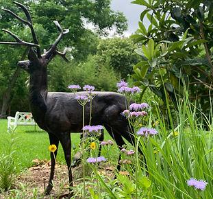 Deer%20Sculpture_edited.jpg