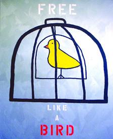 Free Like a Bird - (Libre como un pajaro)