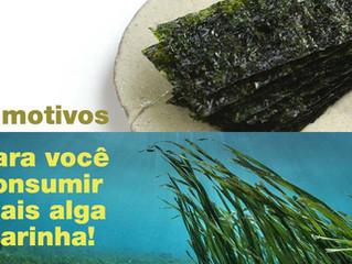 """""""Algas marinhas são um dos alimentos mais nutritivos do mundo"""", diz Jamie Oliver"""