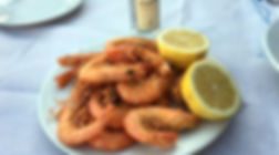 shrimps_edited.jpg