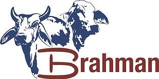 Brahman-Logo.jpg