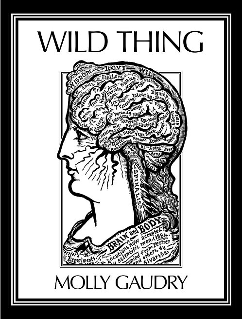 Wild Thing by Molly Gaudry