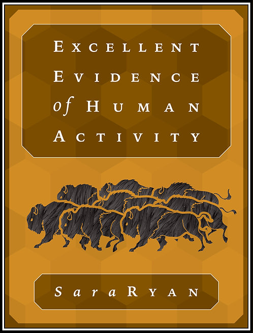 Excellent Evidence of Human Activity by Sara Ryan