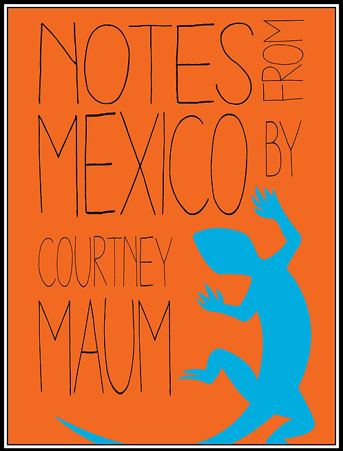 Notes From Mexico by Courtney Maum
