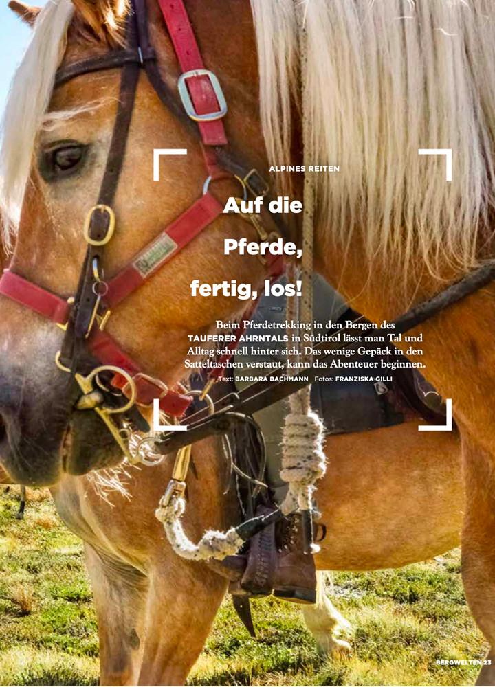 Auf die Pferde, fertig, los!