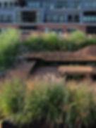 möbel-dachterrasse-holz-gräser-sichtschu