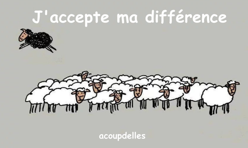 un troupeau de moutons et une brebis noire qui s'envole