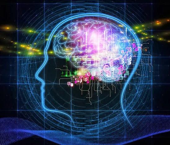 Visage de profil en silhouette avec cerveau coloré
