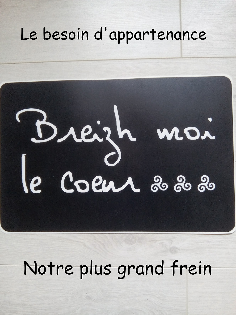 Le besoin d'appartenance, représenté par un message:  Breizh moi le cœur