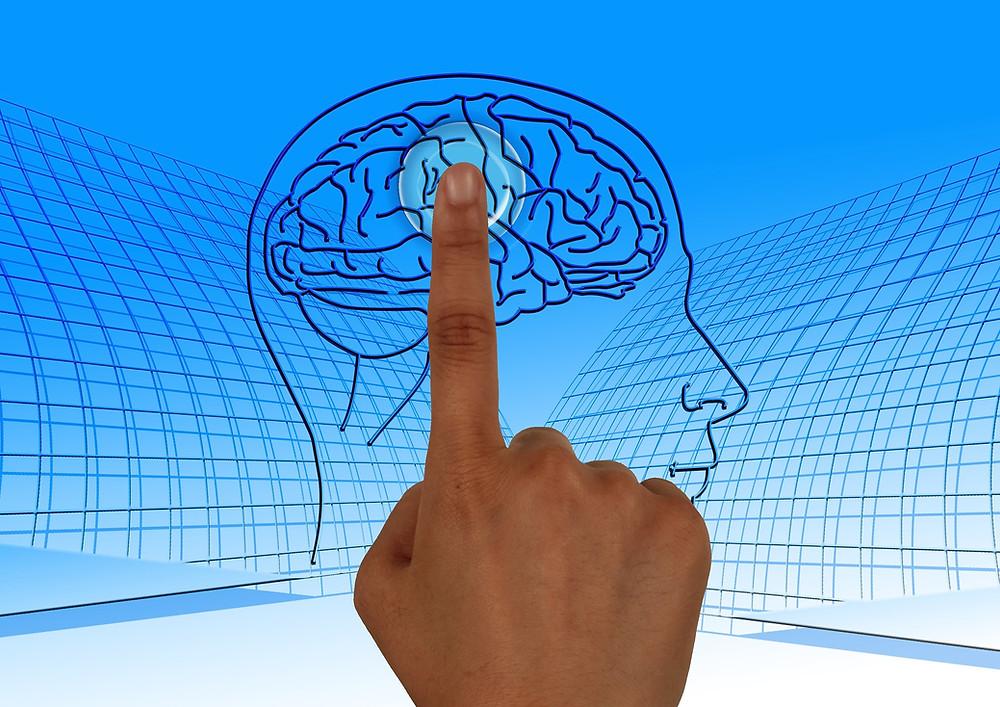 Index pointant une zone du cerveau
