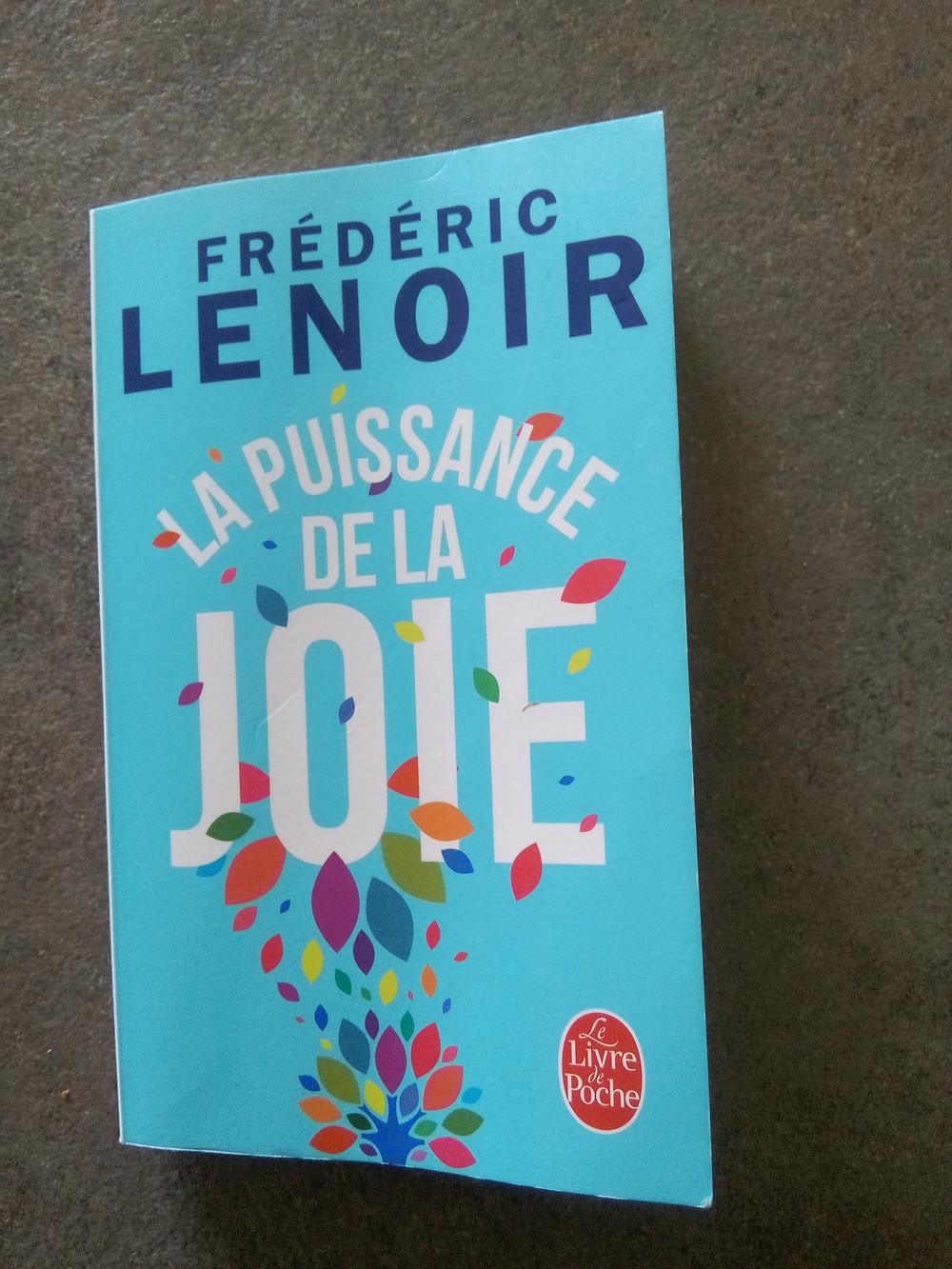 couverture du livre de Frédérice Lenoir, la puissance de la JOIE