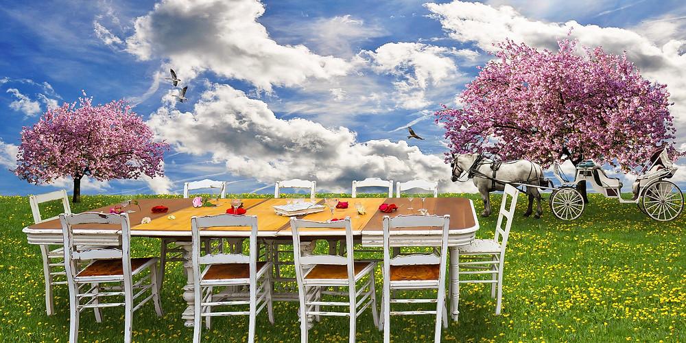table prête pour un pique-nique sur l'herbe