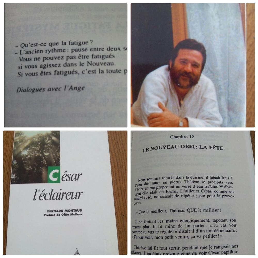 Collage d'extraits et d'images tirés du livre César l'éclaireur