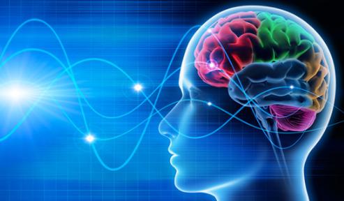 cerveau connecté à des lignes sinusoidales, image publicitaire de Winnerman productions