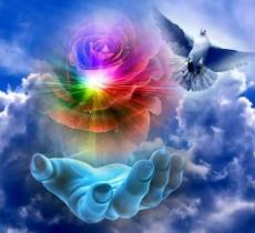 Une main ouverte, une rose couleur arc en ciel au dessus et une colombe qui s'envole au milieu des nuages