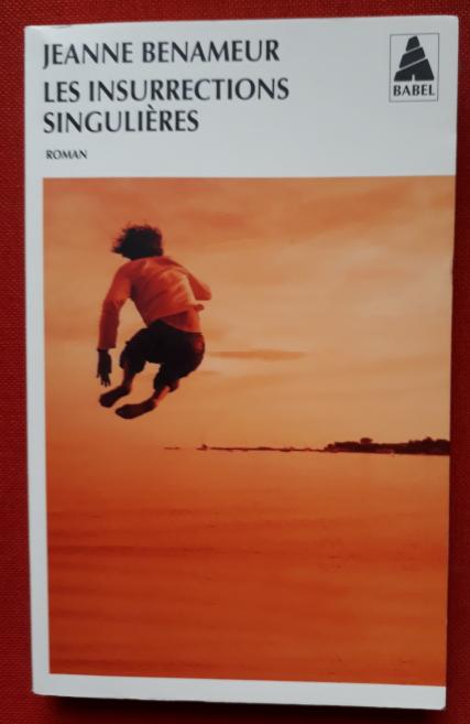 Couverture du roman: Les insurrections singulières de Jeanne Benameur