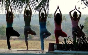 Cinq personnes de dos dans la posture yoga de l'arbre