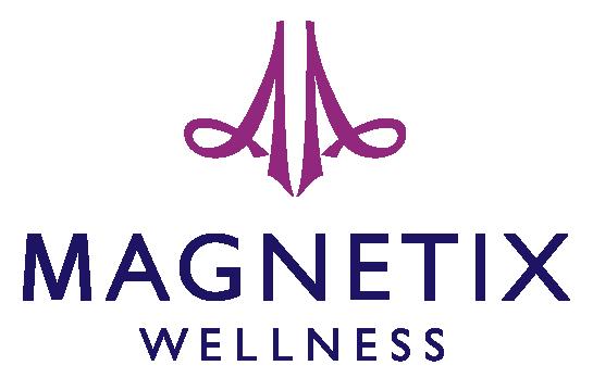 Logo de l'entreprise Magnetix