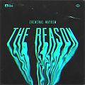 The_Reason.jpg