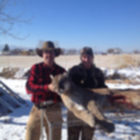 Greg Moats Mountain Lion Hunting