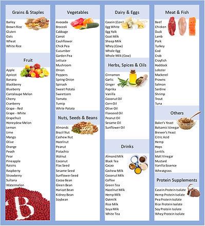 List of foods tested.jpg