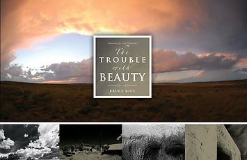 The Trouble With Beauty cover