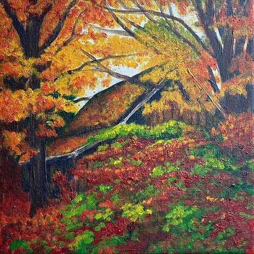 BERKSHIRE MEMORIES - Hiding in the Woods