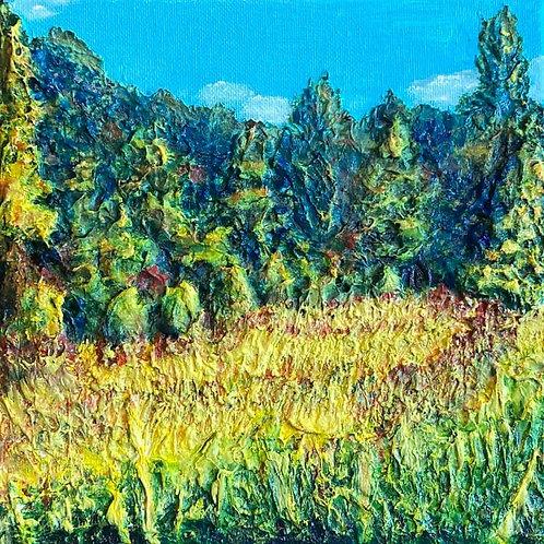 BERKSHIRE MEMORIES - Into the Woods