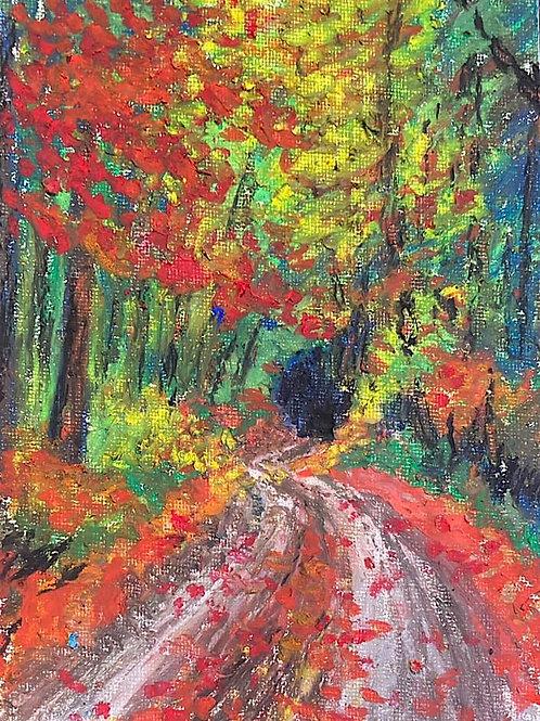 BERKSHIRE MEMORIES - Fall Drive in the Berkshires