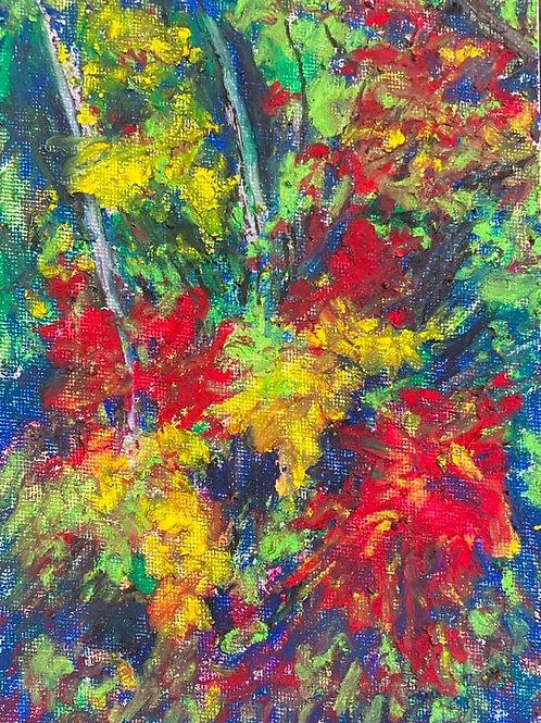 BERKSHIRE MEMORIES - Berkshire Woods in the Fall