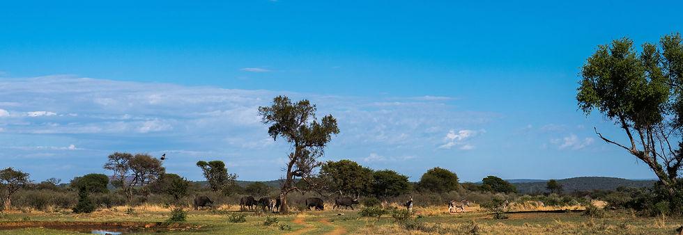 monate game reserve