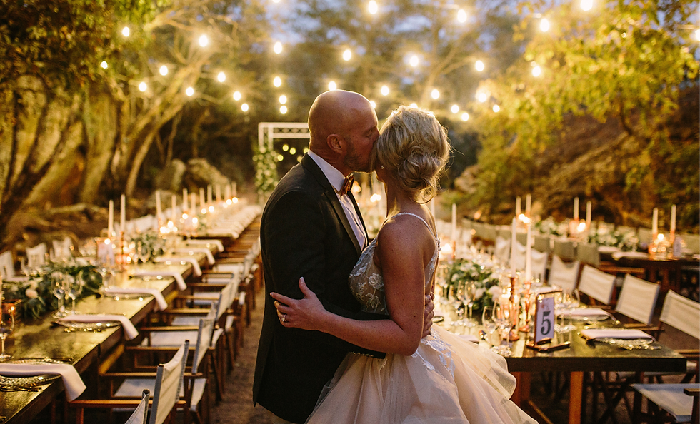 perfect bushveld wedding