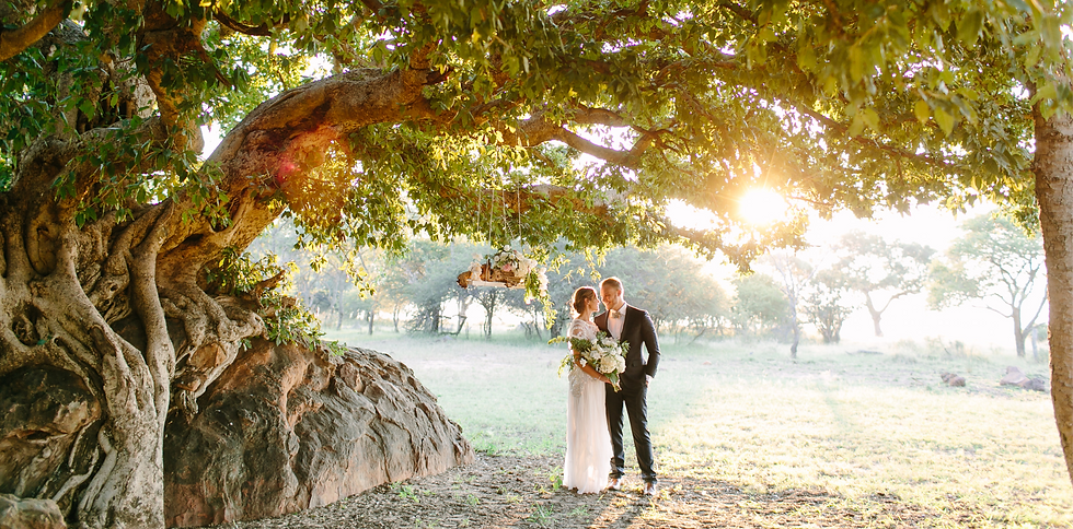monate rock fig tree wedding
