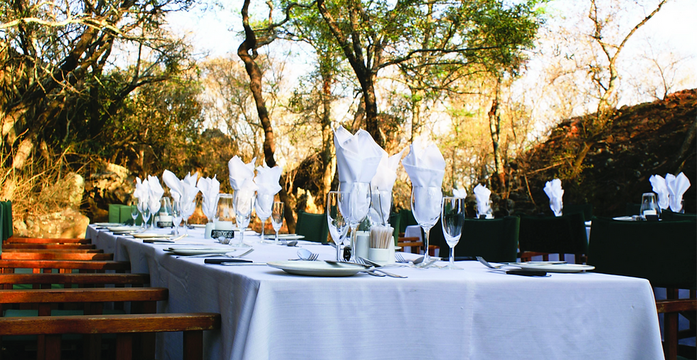outdoor breakfast game reserve