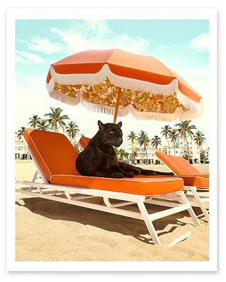 Regulat Miami Beach.jpg