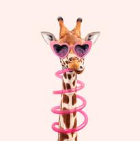 Thirsty Giraffe SQ.jpg