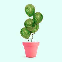 CactusBalloon.jpg