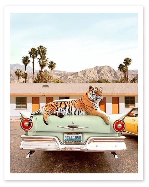 Reg. TigerMotel.jpg