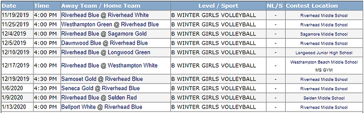 MS Blue Girls Volleyball.PNG