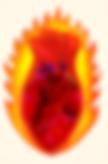 rosa de fuego sin titulo.PNG