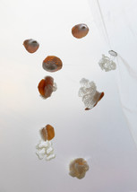 Ode to Cloudberries mixed media