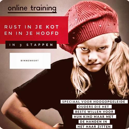 24/3 - 9.30 :ONLINE TRAINING - Rust in je kot en je hoofd in 3 stappen