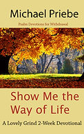 Show Me the Way of Life E-Book Cover.jpg