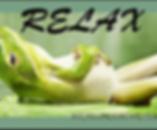 frog relax.webp