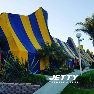 Large Fumigation Tenting