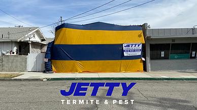 Commercial Termite Fumigation