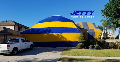 Residential Termite Fumigation