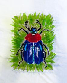 BeetleBowl_0001_Layer 1.jpg