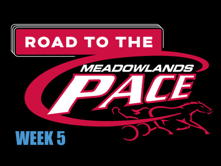 Week 5 of Dave Little's Road to the Meadowlands Pace