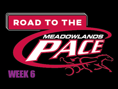Week 6 of Dave Little's Road to the Meadowlands Pace